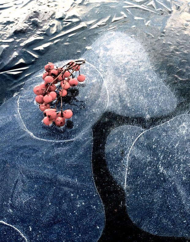 Joulukuu -inspiraatiota luonnosta @asuntomessublogit