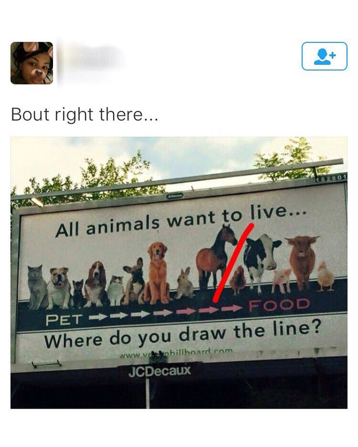 Drawing the line.