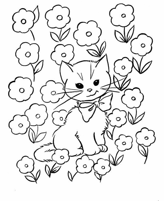 cat color pages printable   Kids Coloring Pages - Free ...