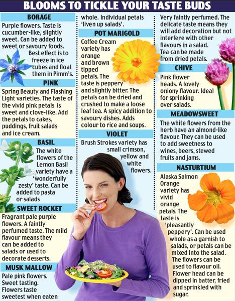 100 garden flowers that are good enough to eat  Read more: http://www.dailymail.co.uk/news/article-491183/100-garden-flowers-good-eat.html#ixzz3bJf3dDtD  Follow us: @MailOnline on Twitter | DailyMail on Facebook