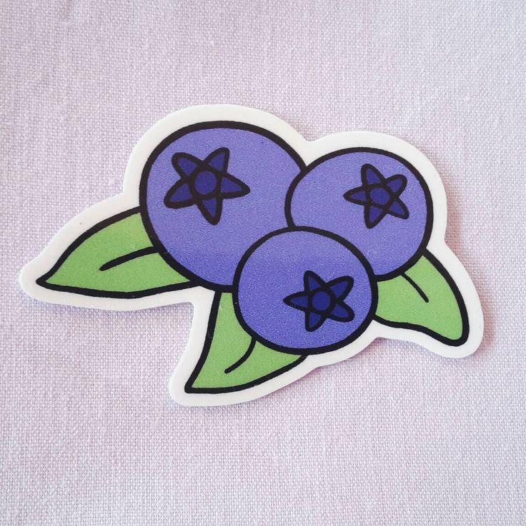 Blueberry Sticker - Cute Fruit Stickers, Vegan/Kid's Stickers, For Laptops and Notebooks by gooseandrabbit on Etsy https://www.etsy.com/listing/273216610/blueberry-sticker-cute-fruit-stickers