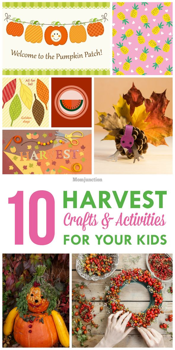 harvest craft ideas for children 1000 images about craft ideas on crafts 6697