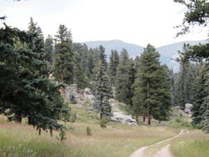 Indian Creek Trail at Mount Evans Wildlife Area