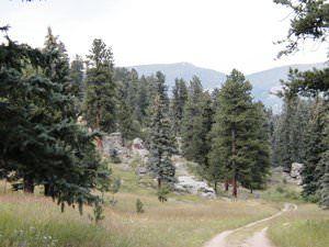 Indian Creek Trail at Mount Evans Wildlife Area