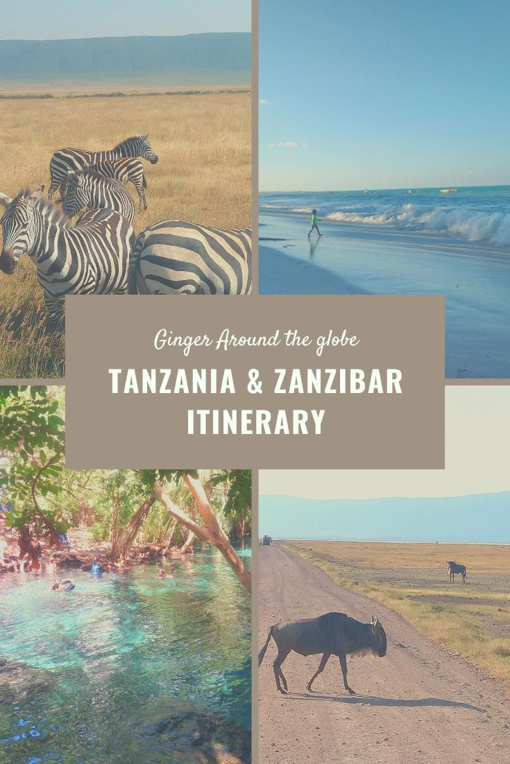 How Long Does It Take To Get A Tanzania Visa
