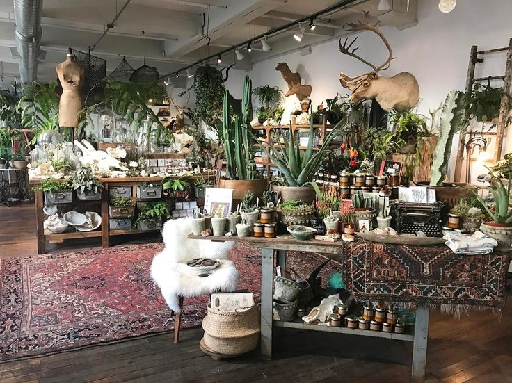 House Accessories Stores Part - 36: See This Instagram Photo By @seedtostem U2022 691 Likes. Visual Merchandising.  Retail Store