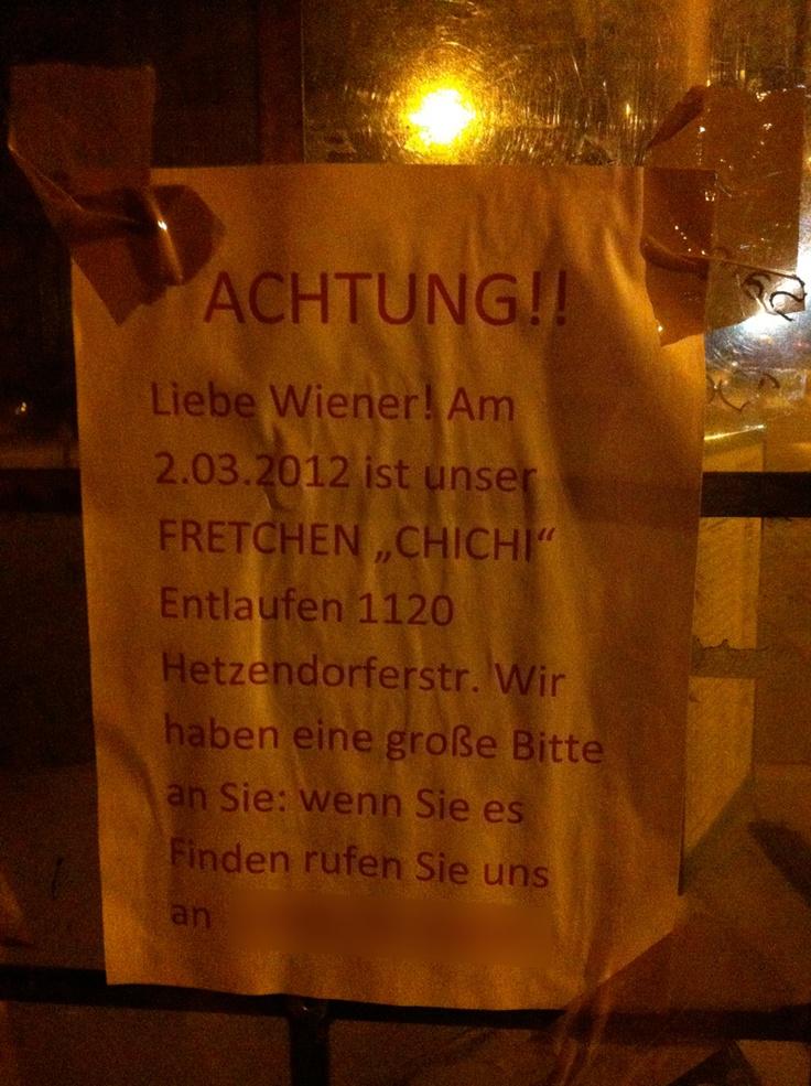 Ganz Wien sucht das Fretchen. (Found in Vienna 1120)