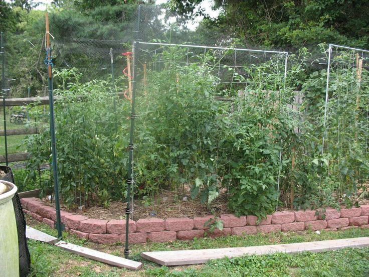 Deer Proof Vegetable Garden Ideas