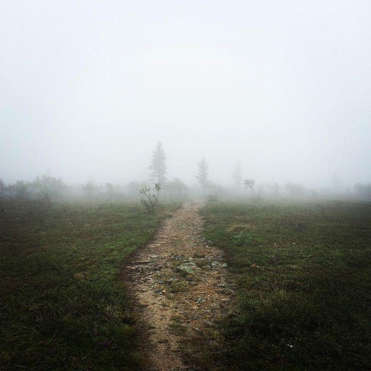 Photo by Saariselän Sanomat www.saariselansanomat.fi saariselansanomat Foggy at the fell #saariselkä #saariselka #tunturissa #sumu #sade #utuista #salaperäistä #kaunista #fog #mist #rainy #mystical