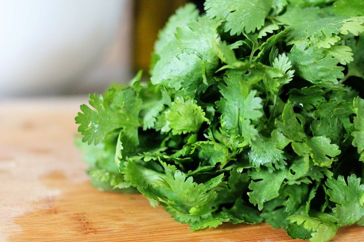 Written by: Kirsten Cowart Cilantro is one of the most gentle and effective natural detoxifying medicines for removing heavy metals and other harmful toxins from your body. It is particularly excellent for removing mercury.  Heavy metals have been connected with serious health problems, such as heart disease, brain deterioration, kidney disease, lung disease, weak [...]