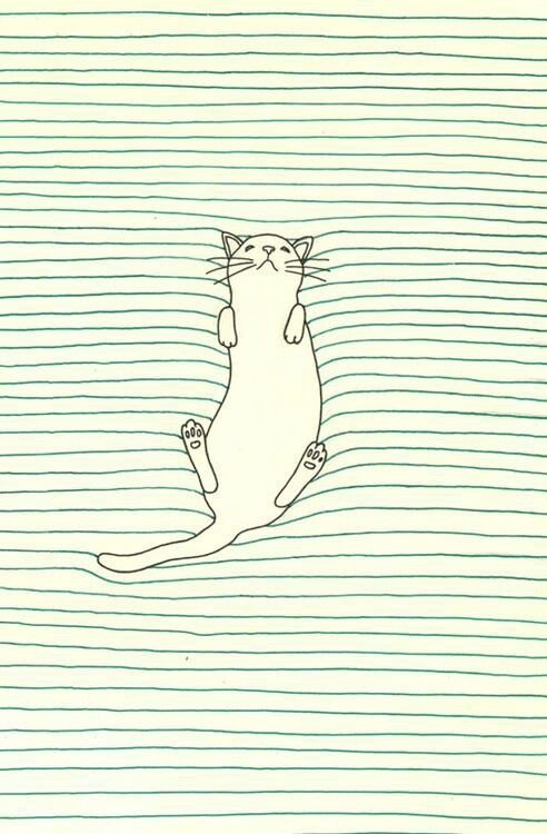 drawing // illustration // cat