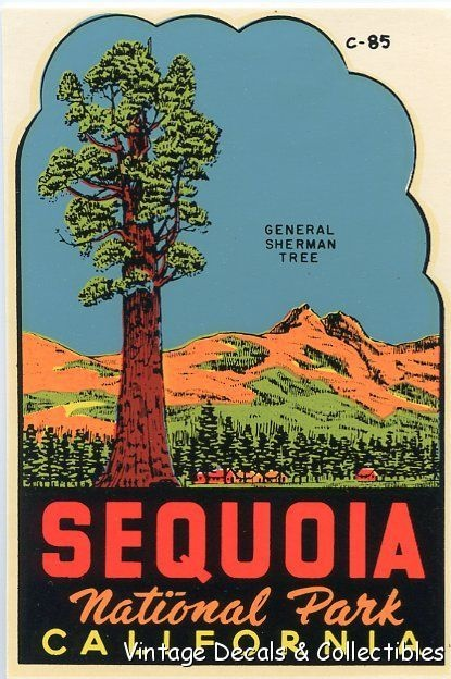 Vintage Sequoia National Park California General Sherman Tree Travel Decal