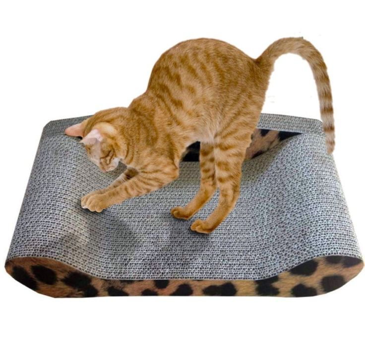 CAT SCRATCHER DELUXE - High Quality Kitty - Kitten Lounge Sofa Mat Seat Leopard