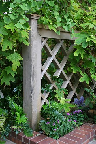 This could belong in my garden, surrounded by greenery with one section made into a gate. Love the proportions of the diamond lattice.