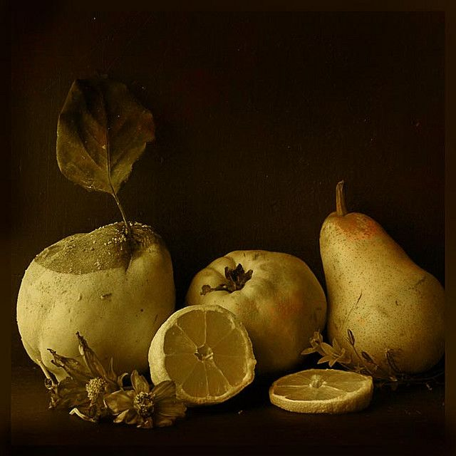 Still Life of Lemons and Pears