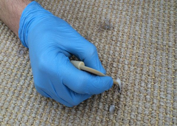 It can be tough to keep the carpeting in your home looking beautiful and smelling fresh. Deep #CarpetCleaningNorthSydney will bring back the pleasant-looking and unblemished form. https://goo.gl/bP0rVn