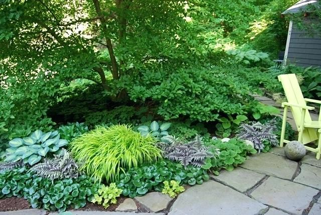 shade garden designs zone 5 shade garden plans zone 6 dry ...