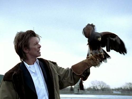 AT LAST I'VE FOUND THIS…. BOWIE WITH BIRD OF PREY!