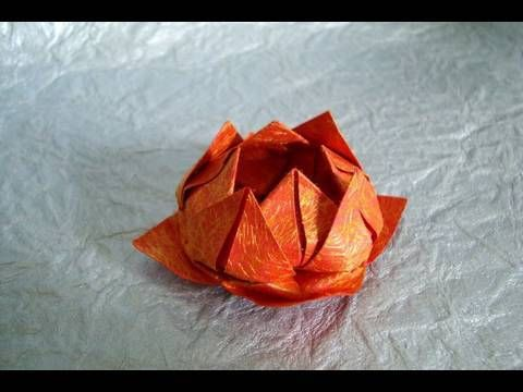 how to make a black lotus flower origami-style