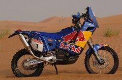 KTM 690 Red Bull-Dakar 2010