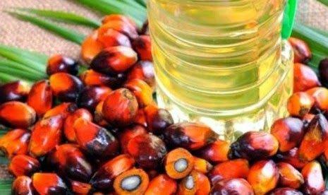 8 Manfaat Sehat Minyak Kelapa Sawit -Pada umumnya, kita menggunakan minyak kelapa sawit untuk menggoreng atau memasak. Minyak yang terbuat dari pohon kelapa sawit ini mengandung beta karoten, vitamin E, dan zat antioksidan. Minyak ini juga terdiri dari lemak jenuh dan lemak tidak jenuh. Perlu Anda ketahui, ternyata selain bisa digunakan untuk memasak, minyak kelapa sawit ini ternyata juga bermanfaat bagi kesehatan kita. Apa saja manfaat sehat dari minyak kelapa sawit ini ? Inilah 8 Manfaat…