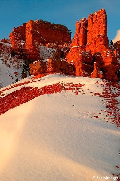 Snow in Red Canyon Utah.