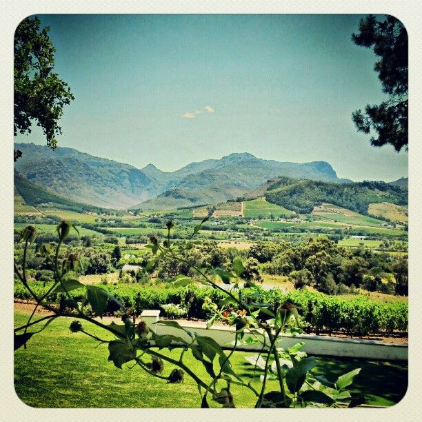 Lunch at La Petite Ferme in Franschhoek http://www.lapetiteferme.co.za/index.php/restaurant