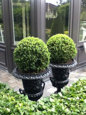 For front porch planters