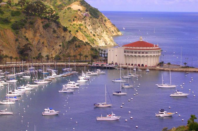 Catalina Island Day Excursion Enjoy a day trip to Catalina Island from Santa Monica, LA, Venice or Marina Del Rey! Tour the island's wildlife, buffalo, vegetation and history. We will collect you from select hotels and bring you to your morning ferry to Avalon. Enjoy the 1-hour ferry trip where dolphin, seal and sea lion sightings may occur, as well as the option to include on Island guided tours & activities. Check your options below.Your guide will pick you up fro...
