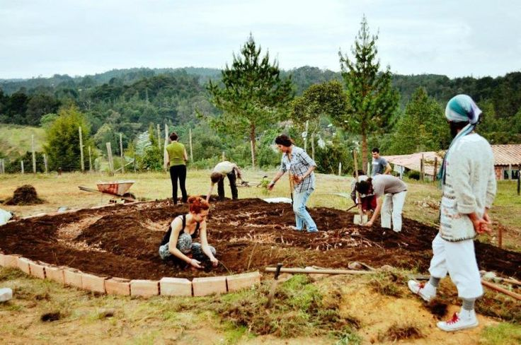 Volunteer on a self-sustainable, organic family farm in Marinilla - workaway.info