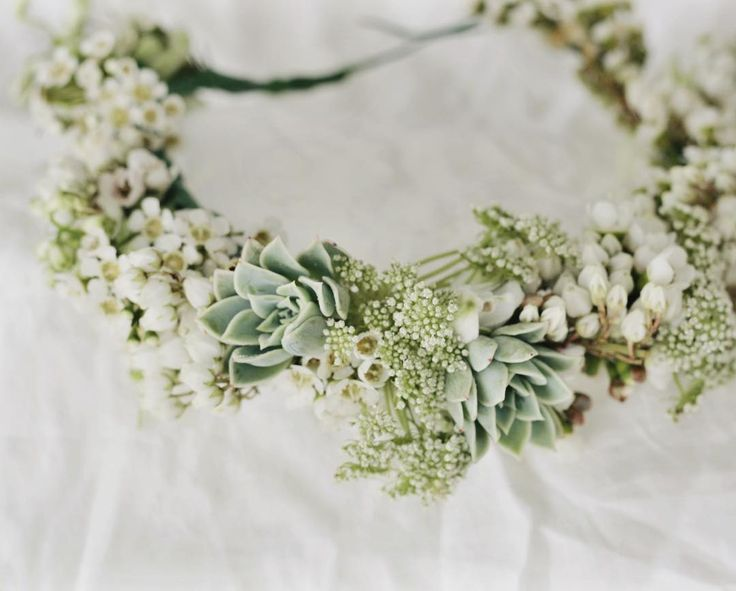 Flower crown featuring succulents andromeda and Queen Anne's lace  #flowers #floralfix #flowersofinstagram  #floral #pretty  #allthingsbotanical  #florist  #calledtobecreative #mybeautifulmess #livecreatively #flashesofdelight  #lovelysquares #flowercrown #flowercrownworkshop #sydneyworkshop #vscoflowers  #floralfridaycompetition  #petalsandprops #softdreamyphotography #floralperfection #underthefloralspell #succulents #succulove #succulentobsession #succulenthoarder