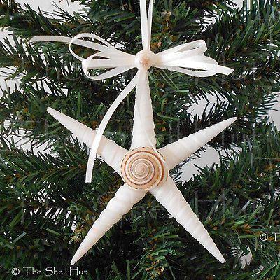 Seashell Christmas Ornament Shell Star REAL Shell Tropical Beach Party Nautical