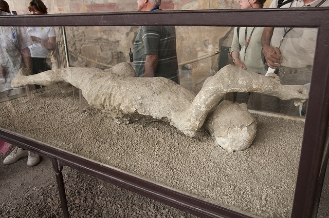 On August 24, 79 AD, Pompeii city turned into a city of the death of some life in that place.  Some cool photographs (linked to more cool photographs) and facts about Pompeii on this site.  Click on in.....