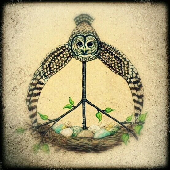 ☮ American Hippie Art ☮  Peace Sign ..