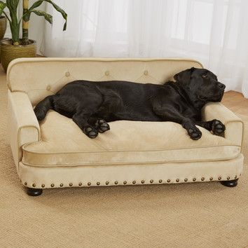 You'll love the Library Dog Sofa at Wayfair - Great Deals on all Pets  products with Free Shipping on most stuff, even the big stuff.