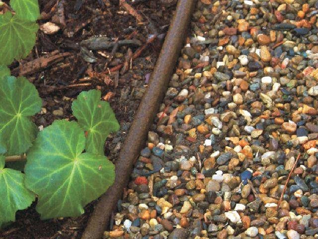 43 Best T Landscape Images On Pinterest Garden Plants 400 x 300