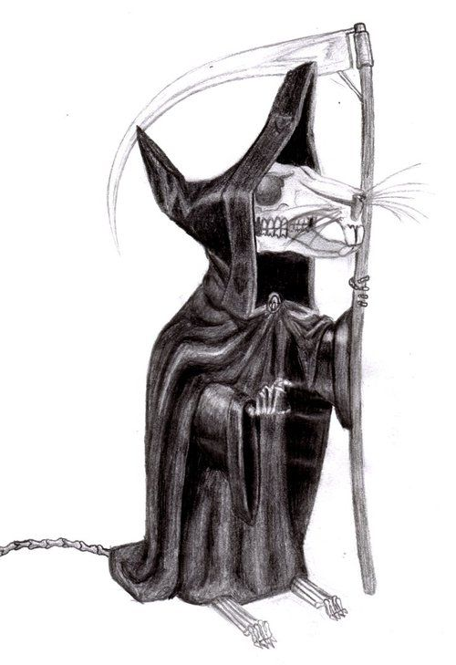 Death of Rats (from Terry Pratchett's Discworld books; drawn by Paul Kidby)  I loves that Grim Squeaker >_