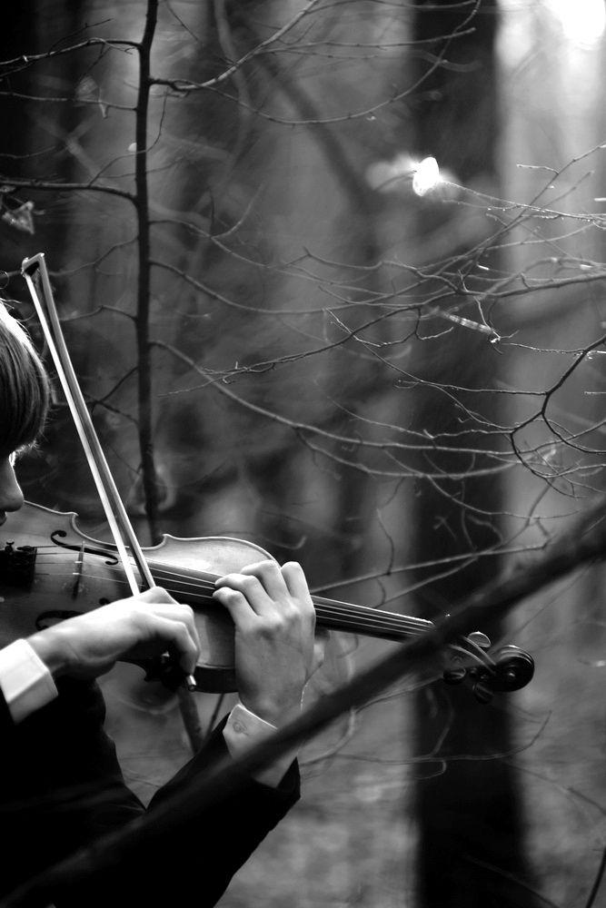 текущий модельный черно белые картинки со скрипкой затем