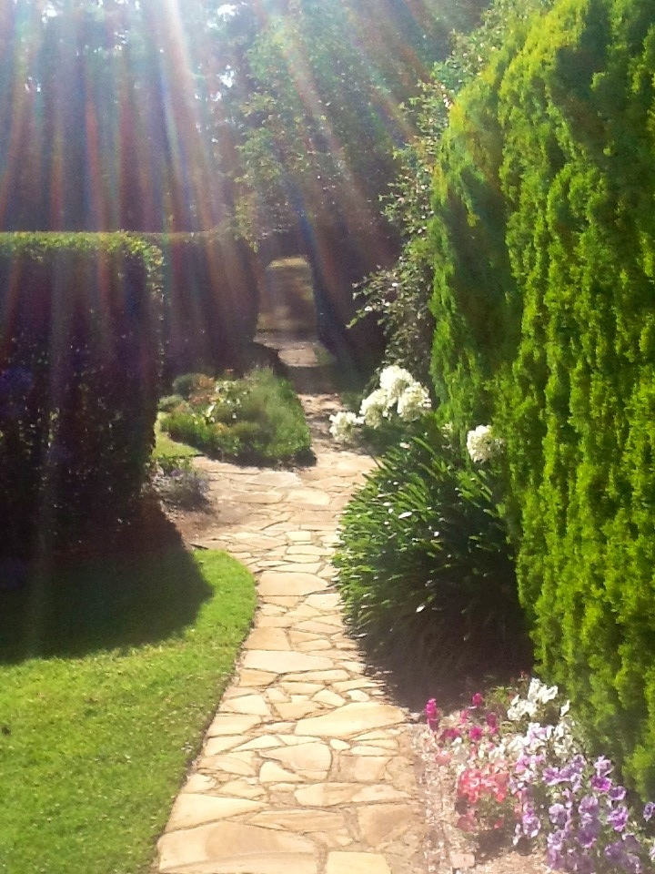 Solar Springs pathway in Bundanoon from Gai Dennett