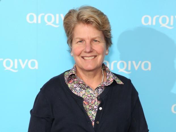 "Sandra Birgitte ""Sandi"" Toksvig OBE is a British-Danish writer, actor, comedian, presenter and producer on British radio and television, and political activist."