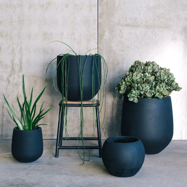 Buy Garden Pots by The Balcony Garden | Garden Pots | Pot Plants | Planters | Flower Pot| Designer Pots