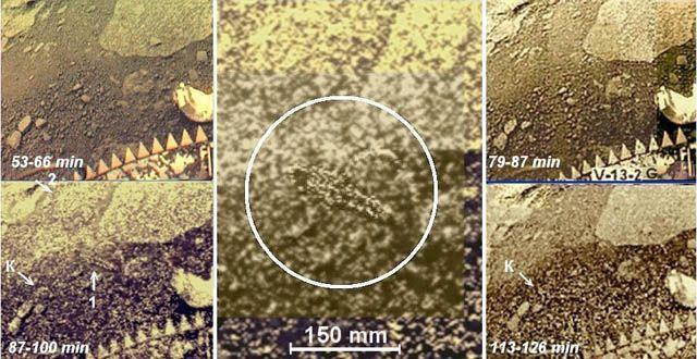 Gab es Leben auf der Venus? Raumfähre Venera 13 hob am 30. Oktober 1981 ab und übermittelte Bilder von der Oberfläche des Planeten. Darauf ein Lebewesen.