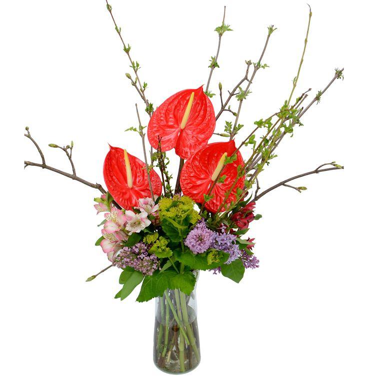 Кабо Сан Лукас -  Безплатна доставка на цветя в София, България