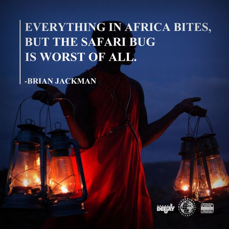 Best African Quotes: 17 Best Safari Humor Images On Pinterest