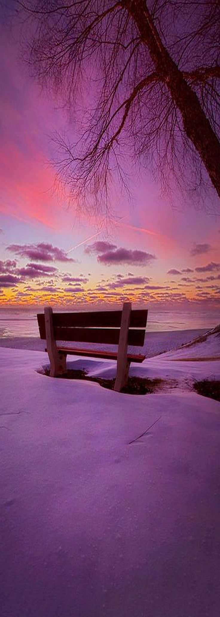 Sunrise on the shore of Lake Michigan in Wisconsin. Wisconsin Horizons By Phil Koch #landscape purple violett red sky winter snow tree nature amazing sunset