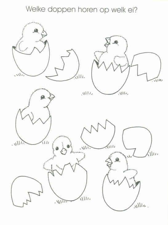 welke dop hoort bij welk ei?