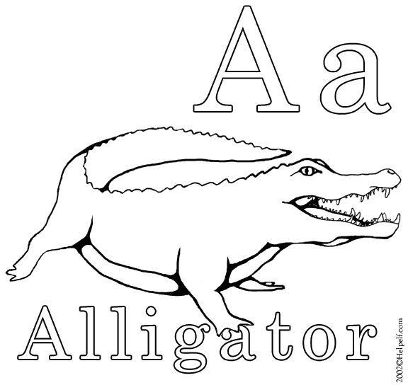 Activity: A is for Alligator. You will need: the A is for Alligator printout and colored pencils/crayons. Directions: read the Alligator facts listed on back of the printout, explain that the word alligator begins with the letter A, then have Jude color the page.