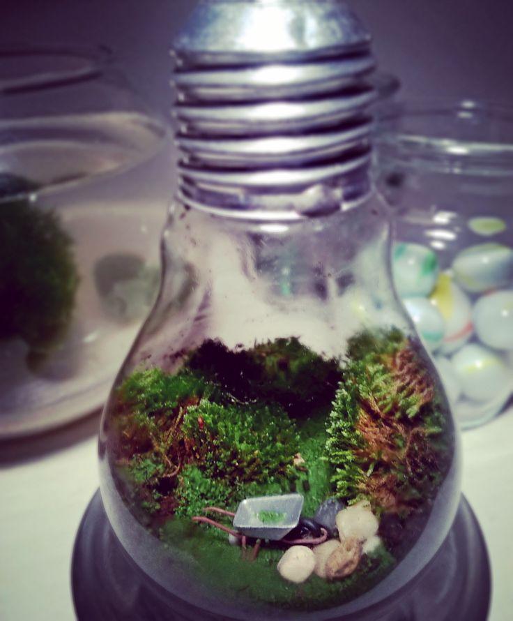 #moss #moha #minikert #tinyworld #makett #makette #diorama #bulb #DIY