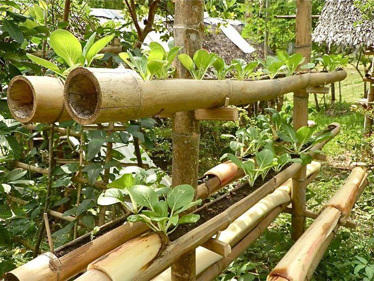 Bamboo planter vertical garden {photo by Andres Tionko}