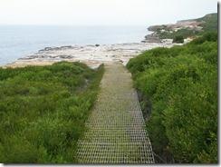 Coast Walk, Royal National Park, NSW